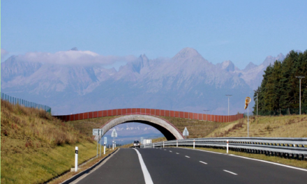 Coridoarele ecologice: de la infrastructura regională la cea urbană