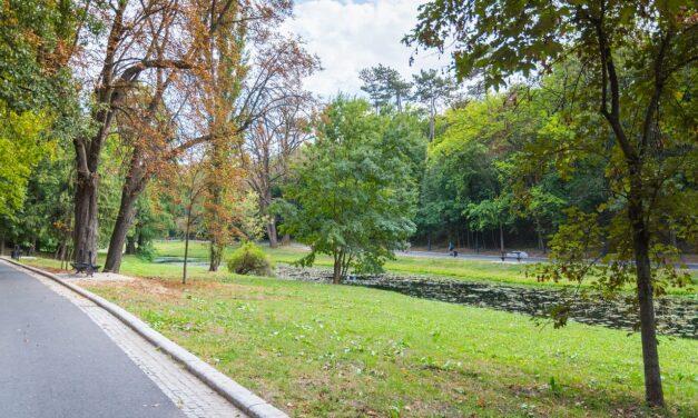 Preşedintele Iohannis cere Parlamentului reexaminarea modificărilor privind spaţiile verzi