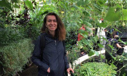 Arh. Sorana Tulbure: La locuințe, trendul este unul minimalist tradițional