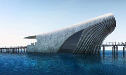 Noul Observator Marin Australian, proiectat de către Baca Architects, va avea forma unei balene