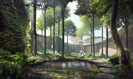 Noul muzeu Hans Christian Andersen în viziunea Kengo Kuma
