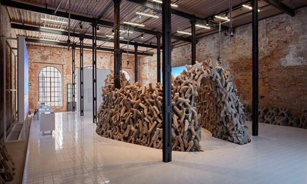 """""""Leul de Aur"""" pentru o alternativă durabilă la beton, câștigat de pavilionul EAU la Bienala de Arhitectură de la Veneția"""